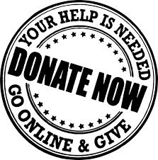 Catholic School Council Online Donation